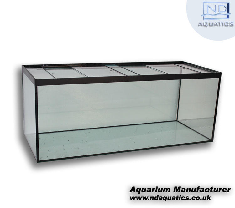 60 x 24 x 24 tropical all glass aquarium aquarium for Standard fish tank sizes